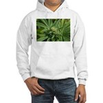 Larry OG Hooded Sweatshirt