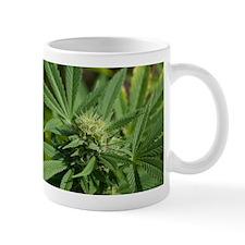Larry OG Mug