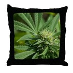 Larry OG Throw Pillow