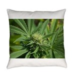 Larry OG Everyday Pillow