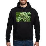 Pineapple Hoodie (dark)