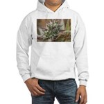 Underchunk Hooded Sweatshirt