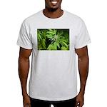 Grapefruit Kush Light T-Shirt