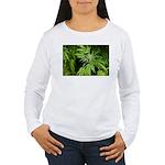 Grapefruit Kush Women's Long Sleeve T-Shirt