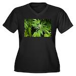 Grapefruit K Women's Plus Size V-Neck Dark T-Shirt