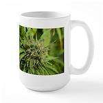 Critical Jack Large Mug