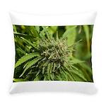 Critical Jack Everyday Pillow