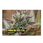 Underchunk (with name) Postcards (Package of 8)