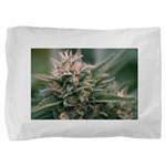 Cornerstone Pillow Sham