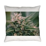 Cornerstone Everyday Pillow