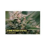 Cornerstone (with name Rectangle Magnet (100 pack)