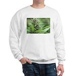 White Russian Sweatshirt