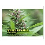 White Russian (with name) Small Poster