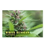 White Russian (with name) Postcards (Package of 8)