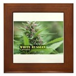 White Russian (with name) Framed Tile