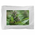 White Russian (with name) Pillow Sham