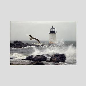 """Beautiful Lighthouses"" Rectangle Magnet"