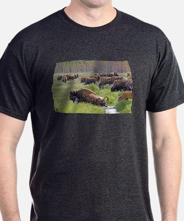 Buffalo Crossing T-Shirt