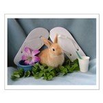 Baby Bunny Rabbit Summertime Small Poster
