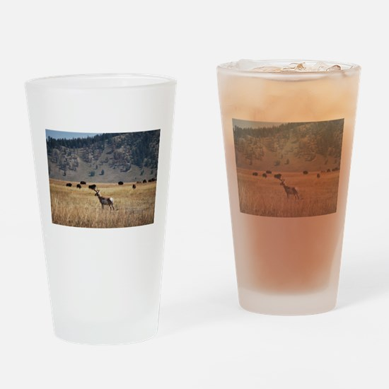 Yellowstone Bison and Antelope Drinking Glass
