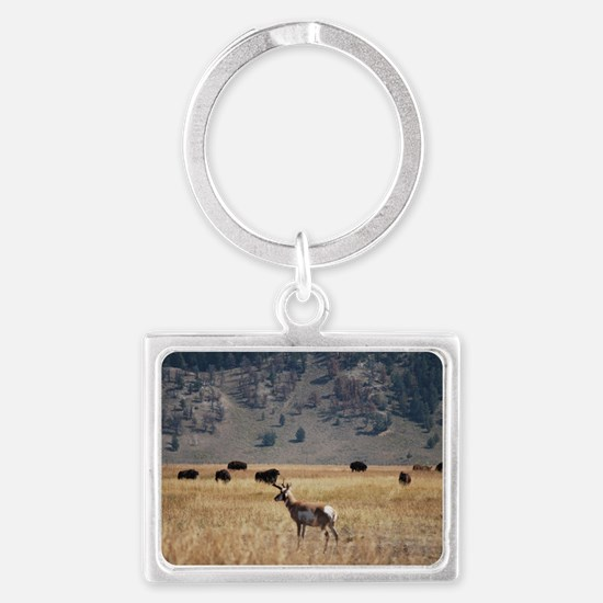Yellowstone Bison and Antelope Keychains