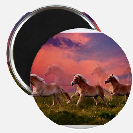 HAFLINGER HORSES Magnets