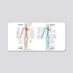 Blood circulatory chart Aluminum License Plate