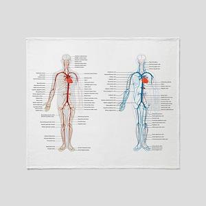 Blood circulatory chart Throw Blanket
