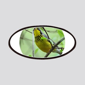 Canada Warbler Patch