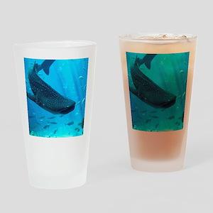 WHALE SHARK 2 Drinking Glass