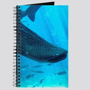 WHALE SHARK 2 Journal