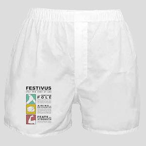 FESTIVUS™ diagram Boxer Shorts