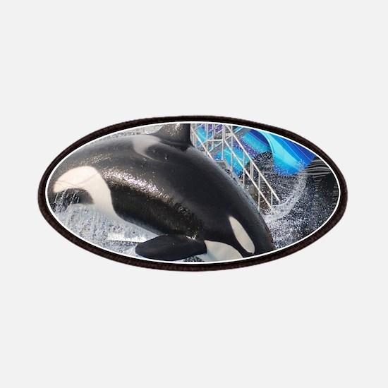ORCA 1 Patch