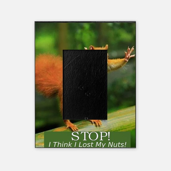 squirrel lost his nuts 2 Picture Frame