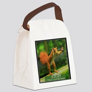 squirrel lost his nuts 2 Canvas Lunch Bag