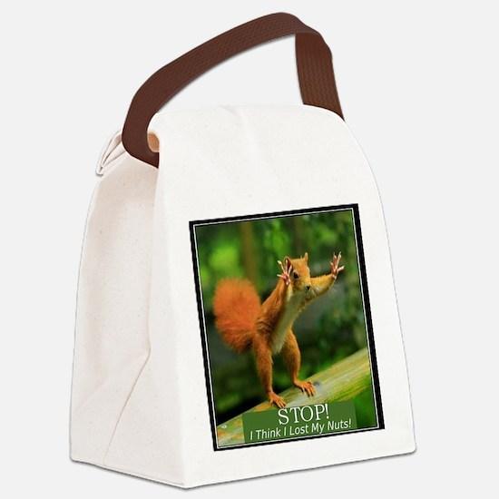 squirrel lost his nuts 2 Canvas Lunch Bag