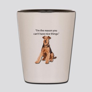 Airedales: Why you can't have nice thin Shot Glass