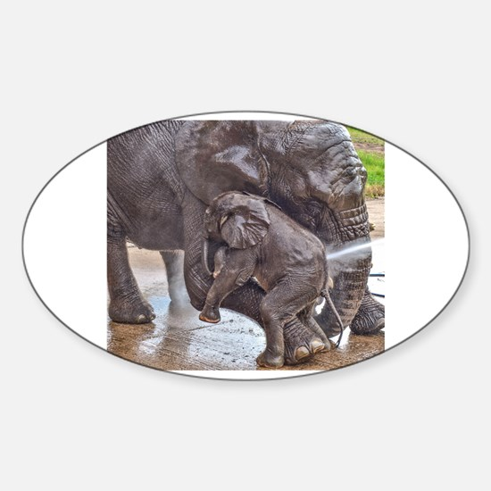 BABY ELEPHANT BATH TIME WITH MOTHER Decal