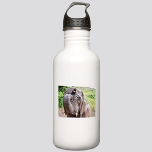 BATH TIME FOR ELEPHANT Stainless Water Bottle 1.0L