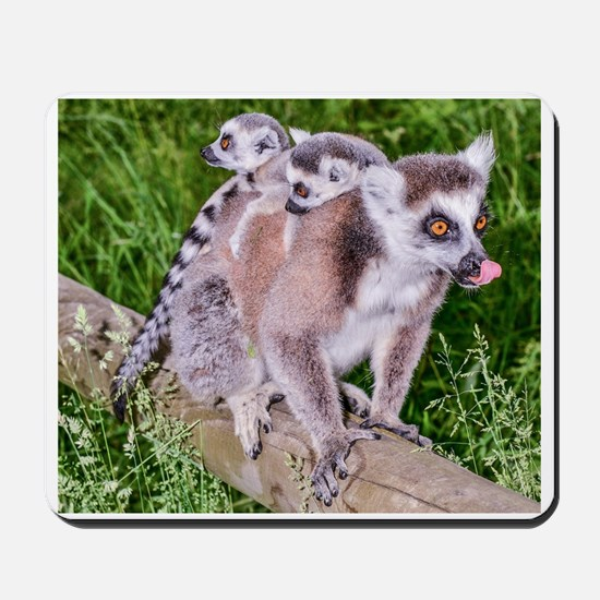 RING TAILED LEMUR MOTHER AND BABIES Mousepad