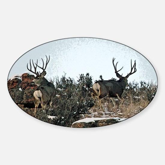 Wood wall bucks 15 Sticker (Oval)