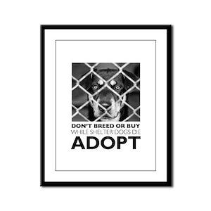 Shelter Dog Framed Panel Print