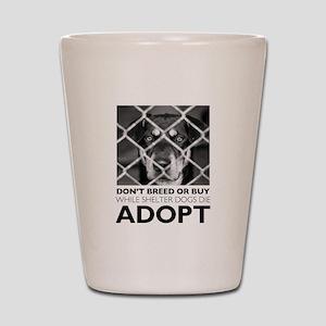 Shelter Dog Shot Glass