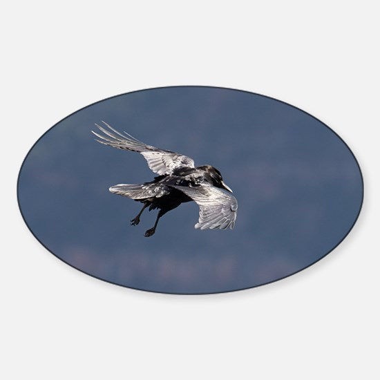 Unique Black canyon Sticker (Oval)