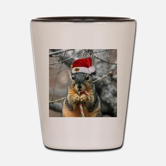Cute Squirrels Shot Glass