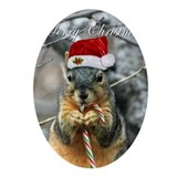 Squirrel Oval Ornaments