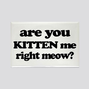 Are You Kitten Me Right Meow Magnets