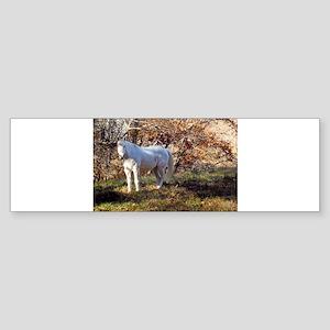 beautifullookwhite Bumper Sticker