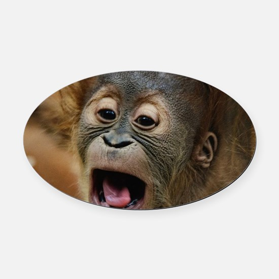 Unique Primates Oval Car Magnet