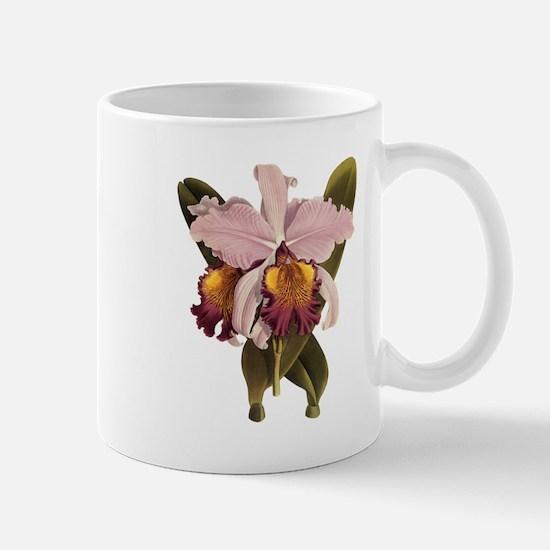 Cattleya Orchid Mugs